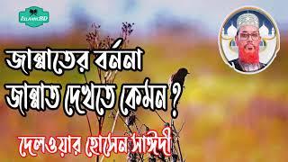 জান্নাতের বর্ননা । জান্নাত দেখতে কেমন ? Allama Delwar Hossain Saidi Bangla waz Mahfil | Islamic BD