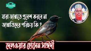 Tafsirul Quran Mahfil Allama Delwar Hossain Saidi | Saidi Bangla Waz | Islamic Bd