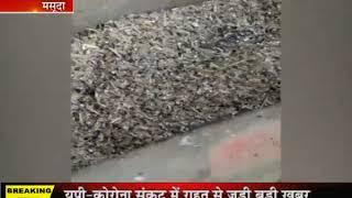 Masooda | मक्खियों से ग्रामीणों को हो रही है परेशानी