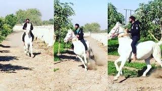 Ravindra Jadeja Horse Riding During Lockdown   1 April 2020 । News Remind