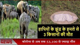 हाथियों के झुंड के हमले से 3 किसानों की मौत
