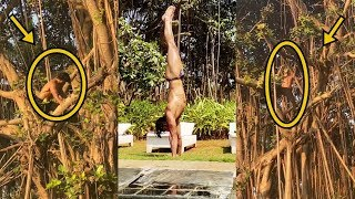 Vidyut Jammwal Climbs The Tree । 4 April 2020 । News Remind