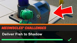 Deliver Fish to Shadow Fortnite