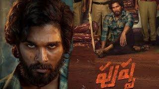 Pushpa Movie First Look Review | Allu Arjun New Movie Pushpa | Tollywood New Movies | Top Telugu TV