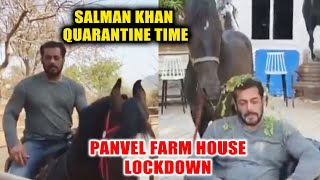 Salman Khan Spending His Quarantine Time With His BELOVED Horse At Panvel Farm House