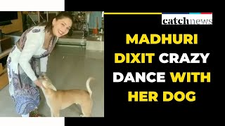 Madhuri Dixit Crazy Dance With Her Dog | Bollywood  News | Catch News