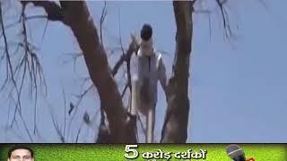 देश का ऐसा गावं जहाँ ऑनलाइन पढ़ाई के लिए लोग पेड़ो पर बिस्तर डाले है