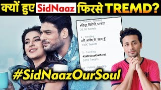 SidNaaz Jodi Trends On Social Media; Here's Why | Sidharth Shukla | Shehnaz Gill