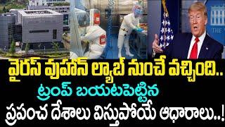 Donald Trump Reveals Shocking Secretes About Coronavirus   China Wuhan Lab   Top Telugu TV