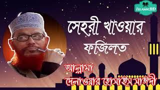 সেহরী খাওয়ার ফজিলত । আল্লামা দেলাওয়ার হোসাইন সাঈদী ওয়াজ মাহফিল । Bangla Islamic Lecture Allama Saidi