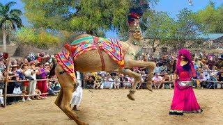 छज्जे ऊपर बोयो री यबाजरो खिल गयो फूल चेमेली को || Chajje upar Boyo Ri Bajro khil by Bhawar Khatana