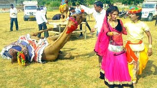 New Dj Rasiya | ऊँचे भीत गिरायो | New Rajasthani Rasiya Dj Song 2020