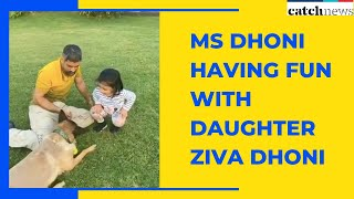 Watch How MS Dhoni Having Fun With Daughter Ziva Dhoni Amid Lockdown  | Catch News