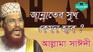 সাঈদী সাহেবের অসাধারন ওয়াজ । জান্নাতের সুখ কেমন হবে ? Allama Delwar Hossain Saidi | Full Bangla Waz