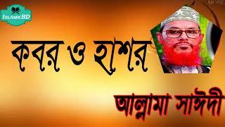 কবর ও হাশরের সুন্দর আলোচনা । হেদায়াতের বয়ান । Allama Delwar Hossain Saidi | Bangla New Waz Mahfil