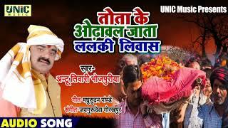 भोजपुरी निर्गुण   तोता के ओढावल जाता ललकी लिवास   Antu Bhojpuriya   Tota Ke Odhawal Jata   Nirgun