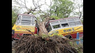Cyclone Amphan leaves trail of destruction; 72 killed in West Bengal, says Mamata Banerjee