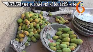 PORBANDAR ગુજરાત ન્યુઝ, પોરબંદરની ખબરને પગલે કેરીના ધંધાર્થીઓને ત્યાં દરોડા 21 05 2020