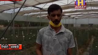 22 May 1कोरोना ने तोड़ी पवन की कमर तीन करोड़ रुपये लगाकर शुरू की थी फूलों की खेती