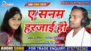 Dilip Dilwala का सुपर हिट साँग 2020 || ए सनम हरजाई हो || A Sanam Harjai Ho || Super Hit Song 2020