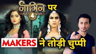 Naagin 4's Creative Director Reaction On Show Going Off Air