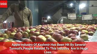 Special Story On Apple Industry, People Related To This Industry Are In Huge Loss
