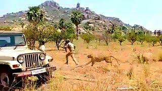 Cheeta (Lepord) Ki Hulchal Se Do Forest Officer Hue Zaqmi   Hyderabad Nalgonda   @ SACH NEWS  