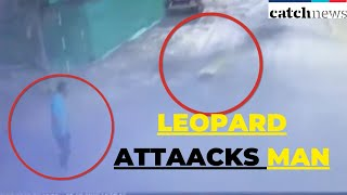 OMG! Leopard Attacks Man In Maharashtra; CCTV Footage Goes Viral | Catch News