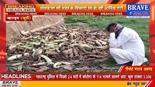 Bahraich: लाॅकडाउन की वजह से किसानों के सामने उत्पन्न हुई आर्थिक तंगी की समस्या, फल व सब्जी हुई खराब