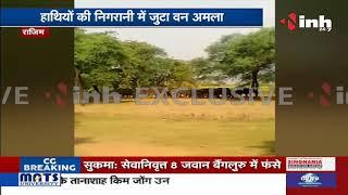 Chhattisgarh News || Arang से निकला 23 हाथियों का दल, फसलों को पहुंचाया नुकसान
