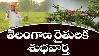 Good News for Telangana Farmers | Midathalu News | Top Telugu TV