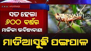 Locust Attack (Pangapala) Hits Odisha | ମାଳିକା ଭବିଷ୍ୟବାଣୀ: ପଙ୍ଗପାଳ ମାଡି ଆସିବାର ସୂଚନା ଥିଲା