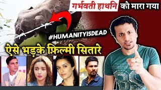 Bollywood Celebs ANGRY Reaction On Pregnant Elephant Killed In Kerala | Pregnant Elephant Death News