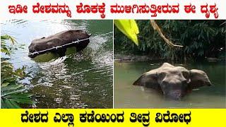 ದೇಶವನ್ನೇ ಶೋಕಸಂದ್ರಕ್ಕೆ ಮುಳಿಗುಸುತ್ತಿದೆ ಈ ದೃಶ್ಯ । ಕರಳು ಹಿಂಡುವ ಸ್ಟೋರಿ ಇದು | Elephant Incident in Kerala