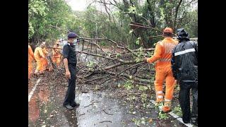 Cyclone Nisarga: Restoration begins; 20 NDRF teams deployed across Maharashtra