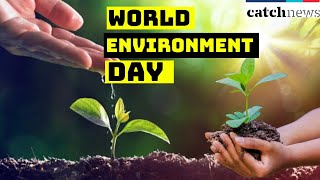 World Environment Day: Moradabad Doctors Giving Plants To Patients With Medicines | Catch News