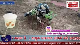 विश्व पर्यावरण दिवस के मौके पर सीमा सुरक्षा बल के परिसर में पांच हजार पोधो का  वृक्षा रोपण किया गया।