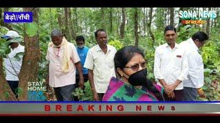 BERO,RANCHI,विश्व पर्यावरण दिवस पर पूर्व विधायक गंगोत्री कुजूर ने पेड़ पौधों में बाँधा रक्षा सूत्र