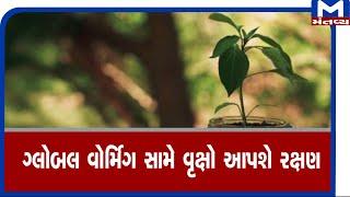 global warming સામે વૃક્ષો આપશે રક્ષણ