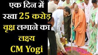 World Environment Day   CM Yogi ने किया वृक्षारोपण, '1 दिन में रखा 25 करोड़ वृक्ष लगाने का लक्ष्य'