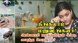 நீங்கலாம் மனுஷங்களா! - குஷ்பு வேதனை  | Killing of pregnant elephant - Kushboo reaction