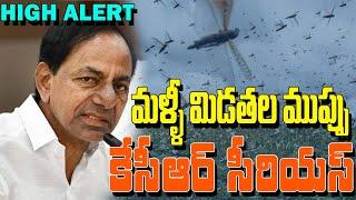 High Alert : CM KCR Serious Over Locust Swarms Near Telangana State Border | Telangana News