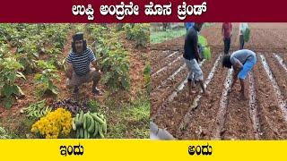 ಇದು ಉಪ್ಪಿ ಸ್ಟೈಲ್ ತರಕಾರಿ   The Upendra crop is ripe   Upendra Posted Video