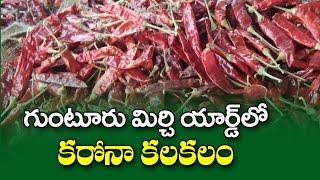గుంటూరు మిర్చి యార్డులో కరోనా కలకలం Corona Cases in Guntur Mirchi Yard | Top Telugu TV