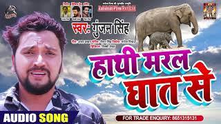 हाथी मरल घात से | #Gunjan Singh | हाथी मेरे साथी | Bhojpuri Sad Song 2020