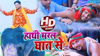 #VIDEO | हाथी मरल घात से | #Gunjan Singh | हाथी मेरे साथी | Bhojpuri Sad Song 2020
