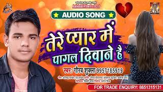 तेरे प्यार में पागल दीवाने है - Gaurav Shukla - Tere Pyaar Mein Pagal Deewane Hai - Bhojpuri Song