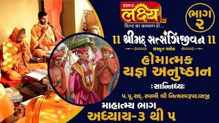 શ્રીમદ્દ સત્સંગિજીવન હોમાત્મક યજ્ઞ અનુષ્ઠાન ||Swami Nityaswarupdasji || Tirthdham Sardhar || Part-2