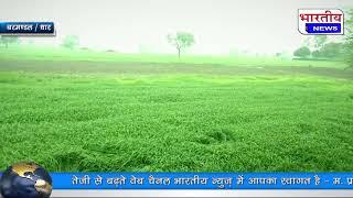 बरमंडल एवं आसपास के क्षेत्रों में बड़े दिनों बाद बारिश हुई तो किसानों में खुशी की लहर दौड़ गई।