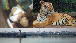 Hyderabad News | 4 In 1 | @Sach News